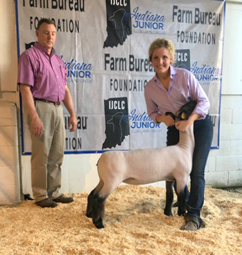 Beck Family Show Lambs Champion Gallery